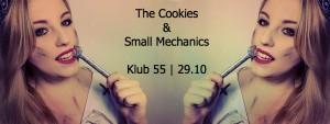 small_mechanics_klub55
